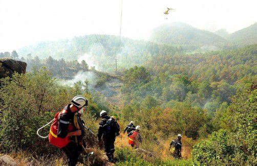 Der Brand hat nach offiziellen Angaben etwa 10.000 Hektar Wald verbrannt. Foto: epa