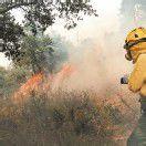 Waldbrand in Katalonien außer Kontrolle: vier Tote