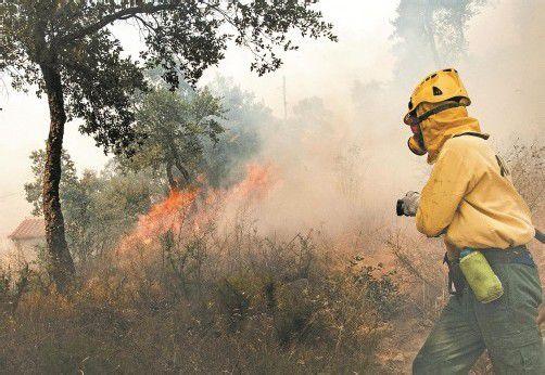 Die katalanische Feuerwehr ist überfordert. Deshalb sollen zusätzlich 400 Feuerwehrleute eingeflogen werden. Foto: EPA