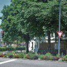 Gartenstadt kann auch Gemüsestadt werden