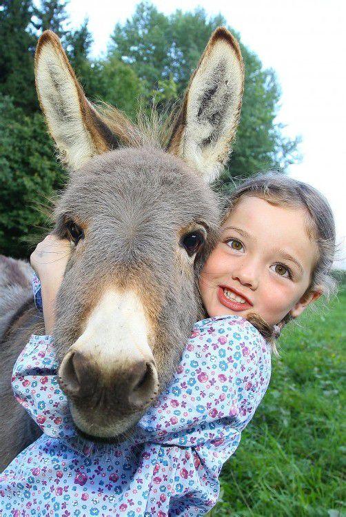 Tierfeature Esel; Laura - 5 Jahre alt aus Schnifis besucht und füttert ihren Kreuzesel Lola - 6 Monate alt im Weidegebiet Beschling