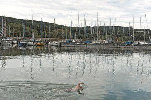 Bodensee mag den Orca nicht