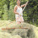 Landwirte verdienten 2011 mehr Geld /D3