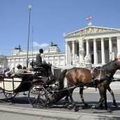 Nächtigungsplus im Wiener Tourismus