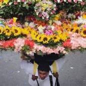 Blumen-Festival in Kolumbien