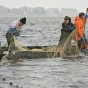 66-Jährige in Fischernetz verheddert und ertrunken