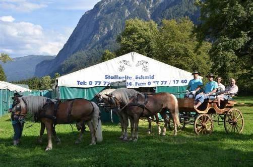 Die ersten Pferde haben bereits im Stallzelt Einzug gehalten. Foto: dob