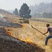 Immer mehr Brände wüten im US-Westen