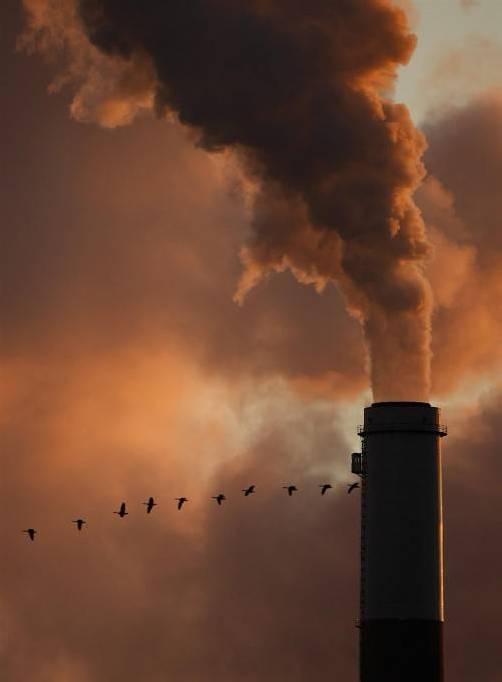 In einer Studie der European Climate Foundation heißt es, dass Österreichs Klimaschutzpläne ambitionierter sein könnten. AP