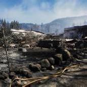 Kanaren: Waldbrände teilweise eingedämmt
