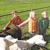 Neuer Hofkindergarten startet in Hohenems
