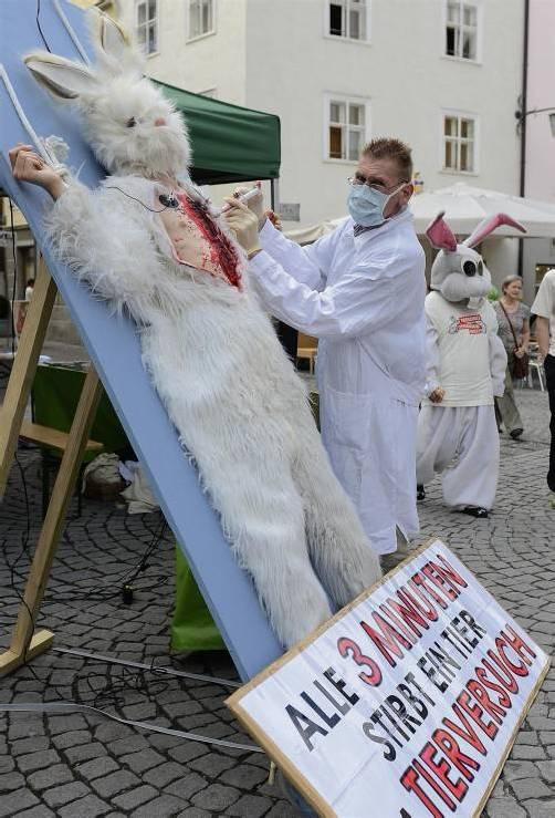 Neues Tierversuchsgesetz: Aktivisten demonstrieren gegen Verschlechterungen beim Tierschutz. Foto: VN