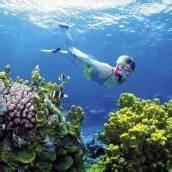 Sonnenschirme sollen Great Barrier Reef retten