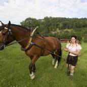 Pferdemekka Feldkirch