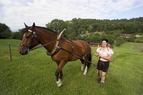 Vorarlberger ueber die man spricht Fuhrmannstage Feldkirch Feature