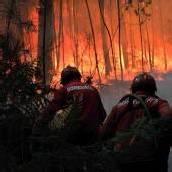 Großflächiger Waldbrand wütet in Portugal