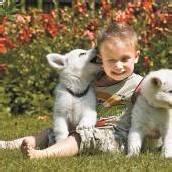 Oliver freut sich über die Hundebabys