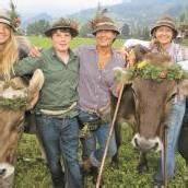 Älpler zieht es mit Vieh talwärts