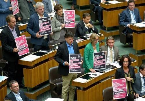 """""""Eine Stimme für Vertuschung und gegen Aufklärung"""": Die Grünen machten ihrem Ärger im Parlament Luft. Foto: apa"""