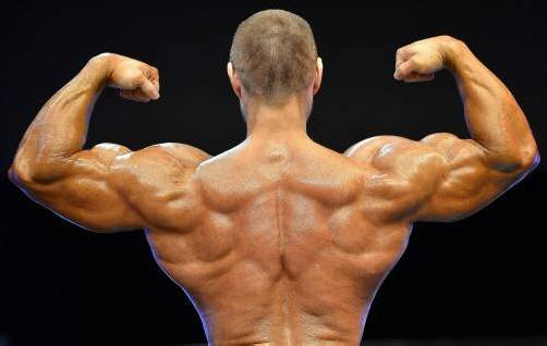 Anabolika sind in Fitnesscentern weit verbreitet. Sie haben eine muskelaufbauende Wirkung. symbolbild: Dpa