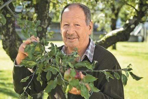 Das Obst ist sein Leben: Walter Griss sieht seine Aufgabe zu einem guten Teil in der Beratung. Foto: VN/Paulitsch