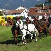 Bösch Staatsmeister im Pony-Vierspänner