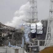 Fukushima: Erster Fall von Schilddrüsenkrebs bestätigt