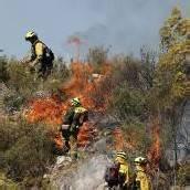 500 Männer im Kampf gegen Flammenmeer