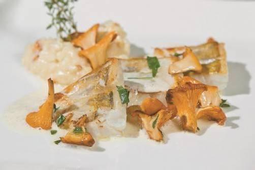 Köstliche Ländle-Küche: Pfifferlinge und Bodenseezander. FotoS: philipp steurer
