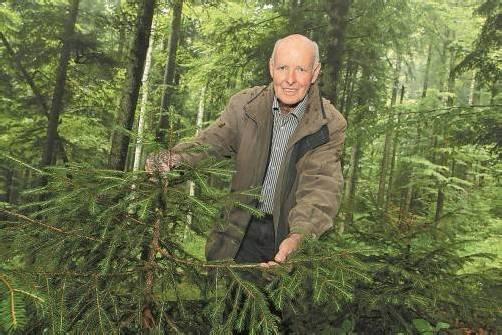 Konrad Bilgeri hat mit Beharrlichkeit für eine Verjüngung des Waldes gekämpft. Dafür wird er heute ausgezeichnet. foto: vn/hofmeister