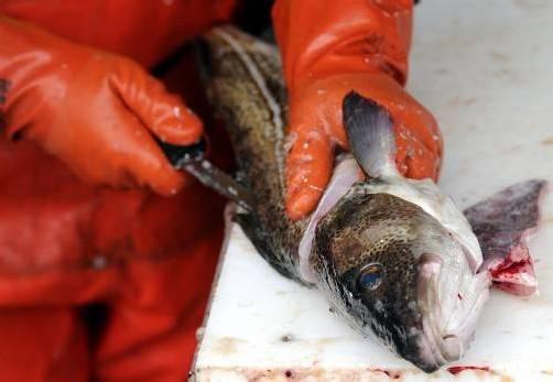 Was auf den Weiten des Meeres passiert, soll künftig besser kontrolliert werden können. Foto: dapd