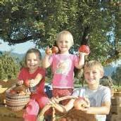 Ländle-Apfel 2012 ab sofort zu genießen