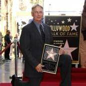 Hollywood-Stern für Mark Harmon
