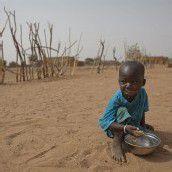 Weltweite Fehlernährung kostet jährlich Billionen
