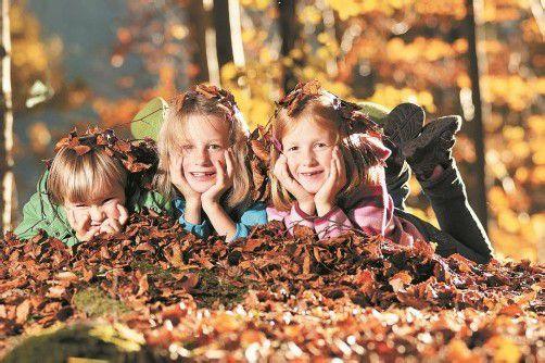 Den Herbst genießen – das können die Vorarlberger Schüler bald. Foto: l. berchtold