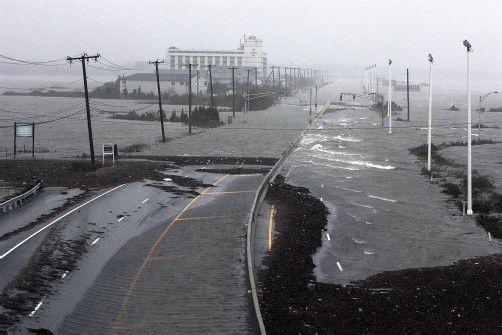 """Die Wissenschafterin Canthia Rosenzweig sagte den Sturm """"Sandy"""" schon vor Jahren voraus. Foto: reuters"""