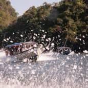 Auf der rasanten Foto-Jagd nach den Seeadlern