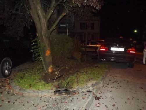 Die Frau krachte auch gegen eine Gartenmauer. Foto: polizei