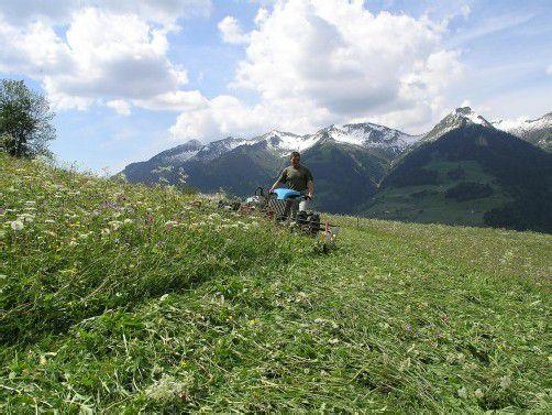 Landwirte tragen zur Erhaltung der Alplandschaft bei. Foto: Grabherr