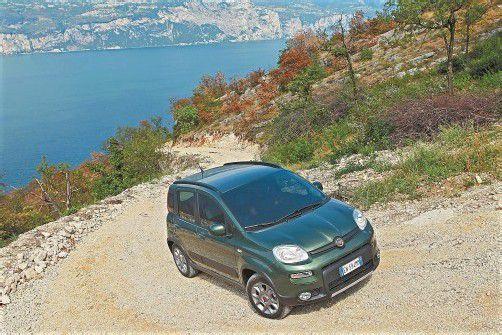 Mit permanentem Allradantrieb plus Sperrdifferenzial steht der Fiat Panda 4x4 im Kleinwagen-Segment einzig da. Fotos: werk