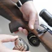Schusswaffen Immer weniger Waffenbesitzer /b1
