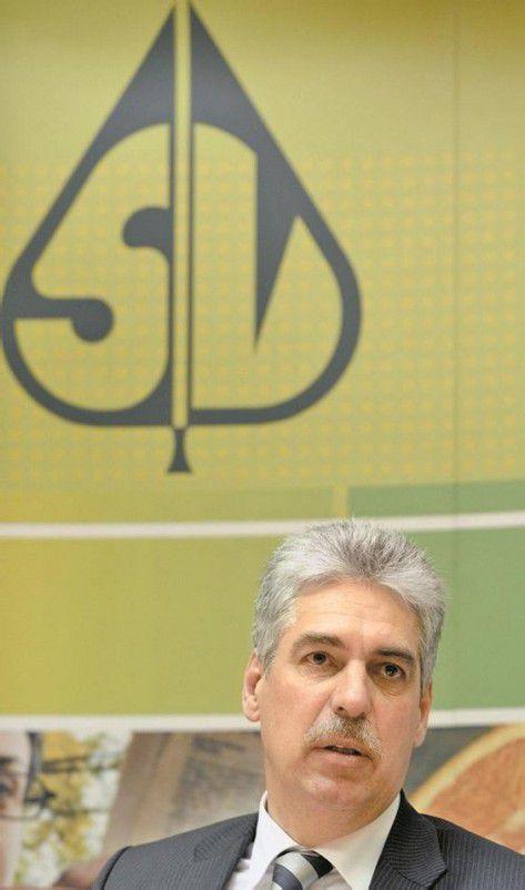 Will nicht mehr zahlen: Versicherungschef Schelling. Foto: APA