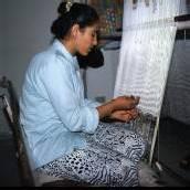 Teppichwerkstatt und tunesische Hochzeiten