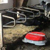 Roboter mistet Kuhstall aus