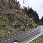 Netze schützen künftig vor Steinschlag auf L 50
