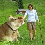 Bauern im Visier: EU hält die Alpförderung zurück