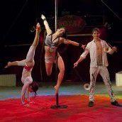Circus Royal in der Landeshauptstadt