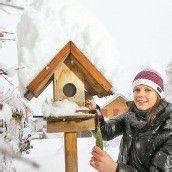 Vorarlberg im weißen Kleid Heute wird erneut Schnee erwartet /A10