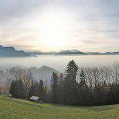 Nebeldecke umhüllte das Rheintal