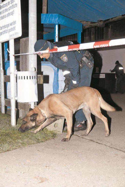Spürnase im Einsatz: Ein Diensthund versuchte die Fährte der vier unbekannten Täter aufzunehmen. Fotos: D. Mathis
